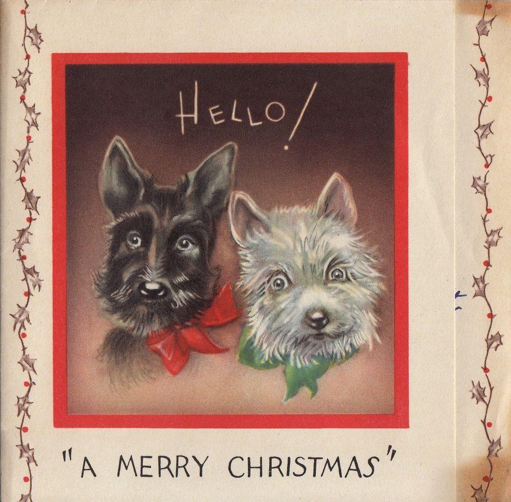 Vintage Greeting Card Christmas Scotty Dog As Is V342 Vintage