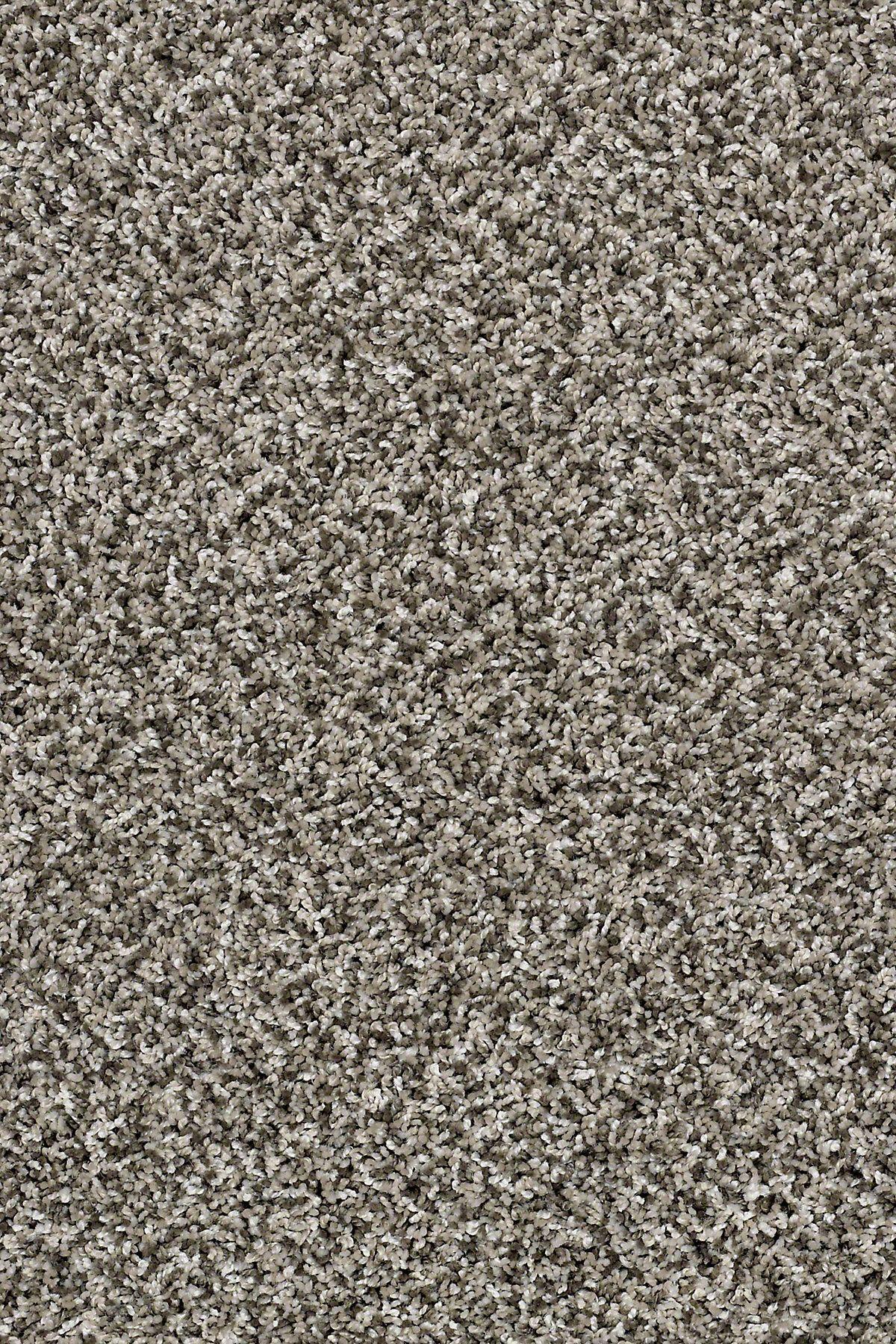Composure Whisper Ea689 00501 Carpets Sample Shaw Floors Carpet Samples Basement Makeover