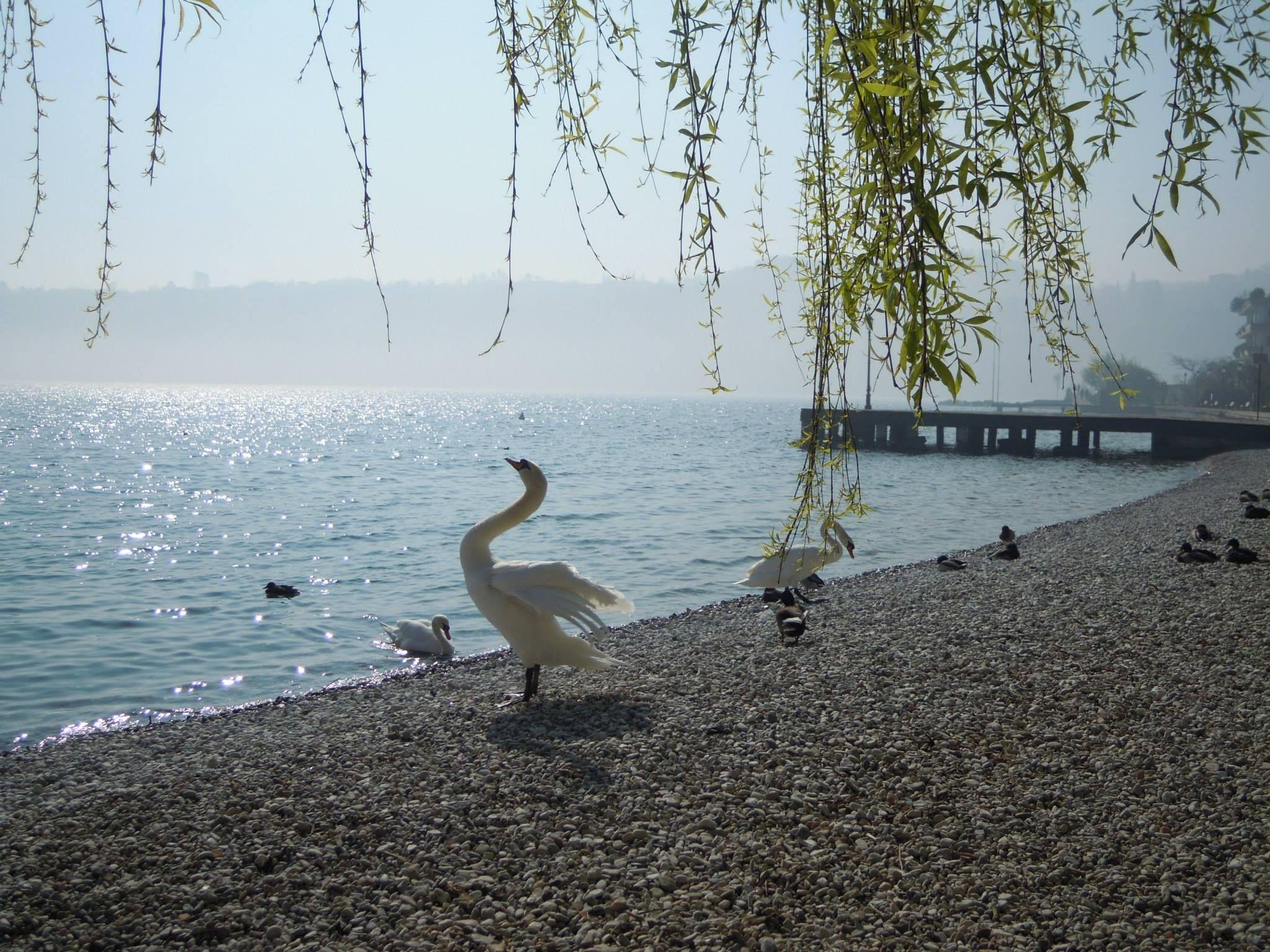 Sgranchirsi per una grande giornata sul Lago di Gardaï ¿ [foto Giuliana Vignozzi]