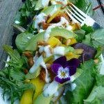 Chicken Mango Avocado Salad with Rosemary Maple Yogurt Dressing ~ Sumptuous Spoonfuls #salad #recipe
