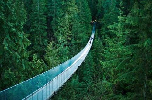 beautiful bridges of the world | Beautiful Places Of The World - 012