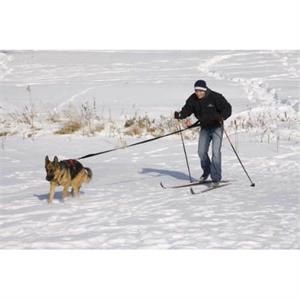 Ultra Paws Basic Skijor Package : Free Shipping : Backcountry K-9