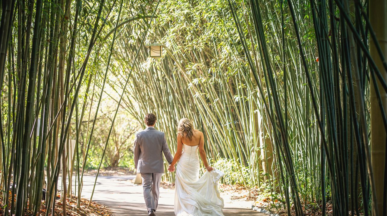 Nashville Zoo Wedding Photo Matt Andrews Photography Pinterest Zoos And Weddings