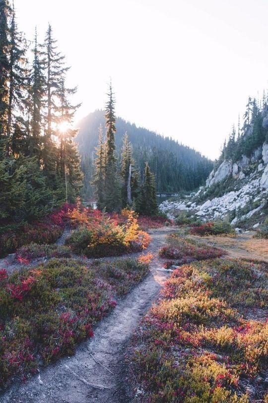 Herrlich, wer will da nicht direkt los wandern | T... - #Da #direkt #ecke #herrlich #Los #nicht #Wandern #Wer #autumnscenery