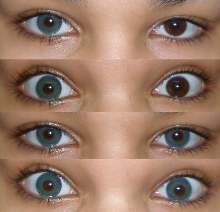 Freshlook Colorblends For Brown Eyes Go Back Gt Gallery