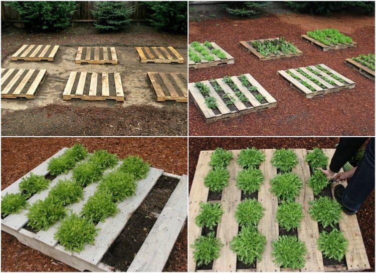 Hochbeet Aus Paletten Bauen Fur Erdbeeren Gemuse Und Co Hochbeet Pflanzen Pflanzen Hochbeet
