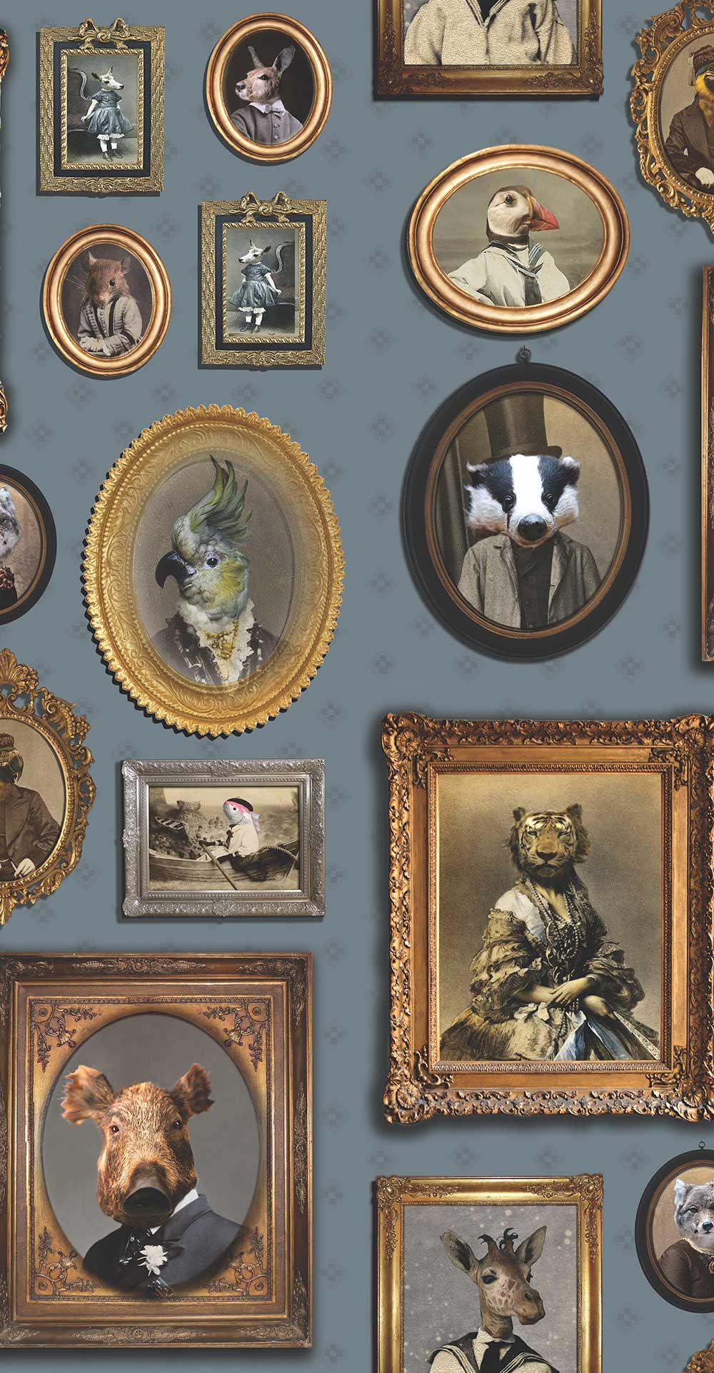 Photo of Portrait Gallery by Graduate Collection – Blue – Wallpaper : Wallpaper Direct