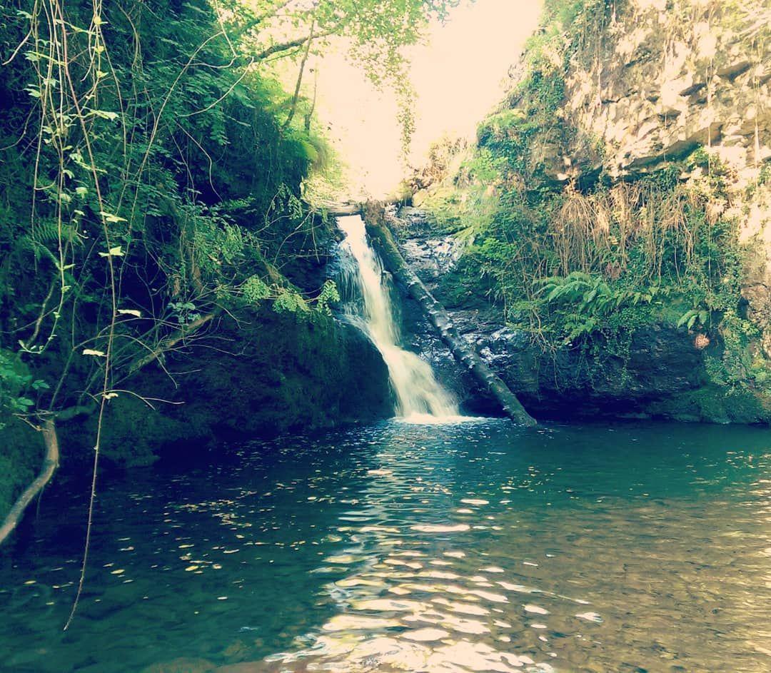 Que Hace Calor Pues Al Río El Río Pisueña Linda Con Nuestra Finca Puedes Disfrutar De Sus Pozas Saltos De Agua Y Cascadas Pidreamcot Outdoor Water River