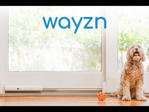Convert Any Sliding Glass Door Into An Automatic App Controlled Pet Door With Added Check Out Wayzn Automatic Sliding Pet Dog Door Best Dog Door Pet Door