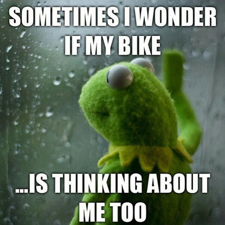 When it rains and you don't go and ride your bike. RELATED: Wet weather survival guide - http://roa.rs/1tBjEn4?utm_content=bufferc410e&utm_medium=social&utm_source=pinterest.com&utm_campaign=buffer. #cycling #rain #weather #bicycling #restday #rollers #trainer