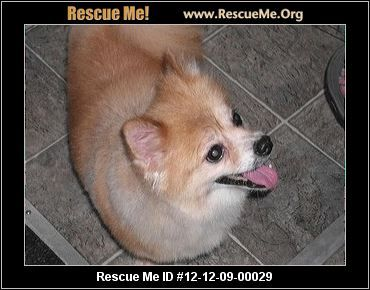 Alli, take her home, today! Call - 614-554-4079