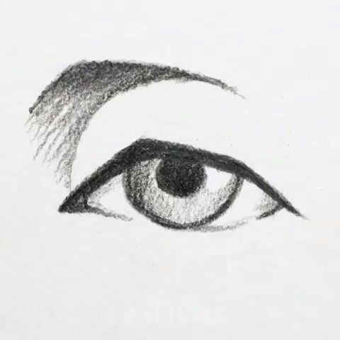 Photo of Eyebrows Drawing