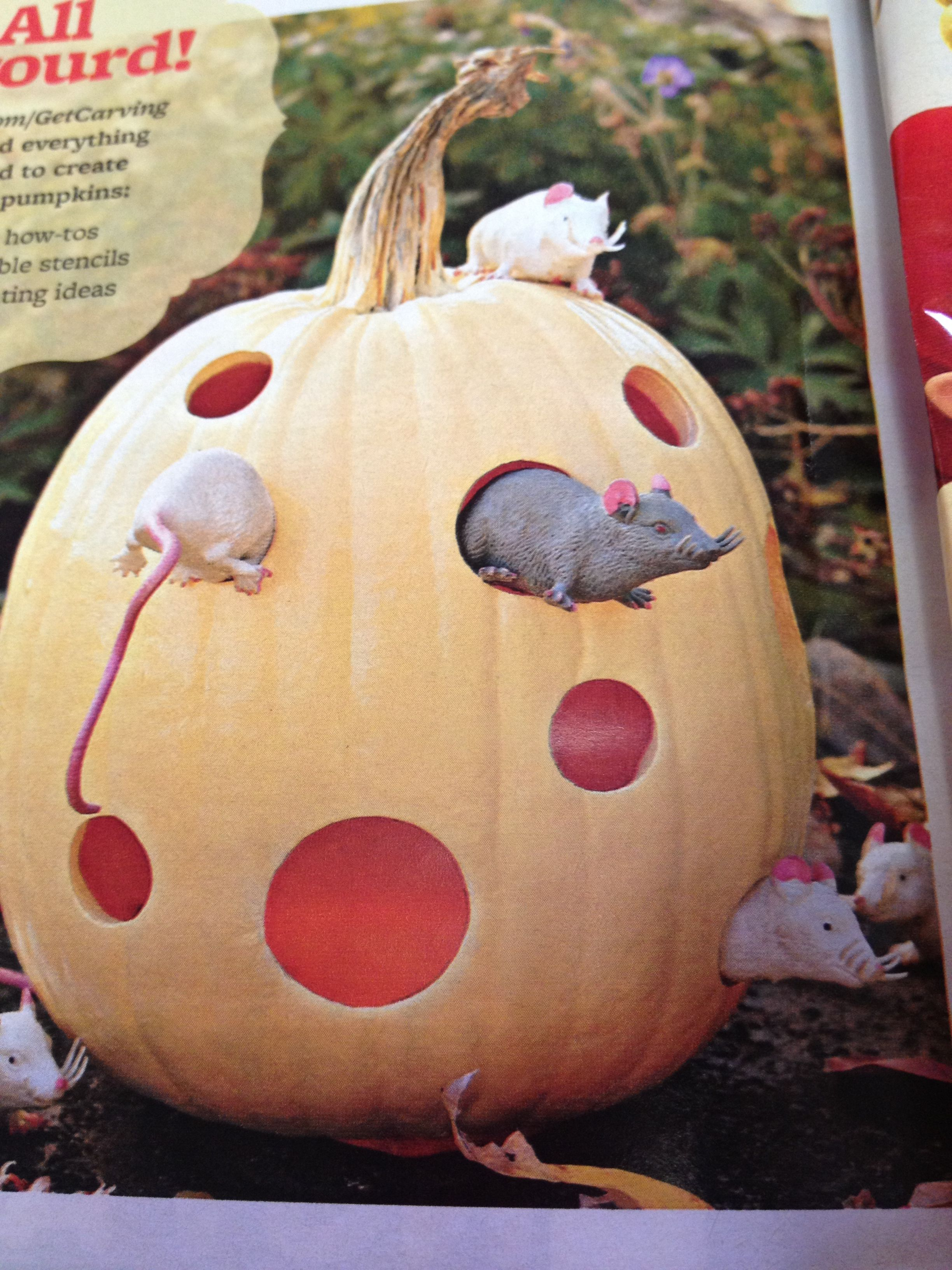 bdff498e8d346d37a9453ac9aef6a77a - Better Homes And Gardens Halloween Tricks And Treats Magazine 2017