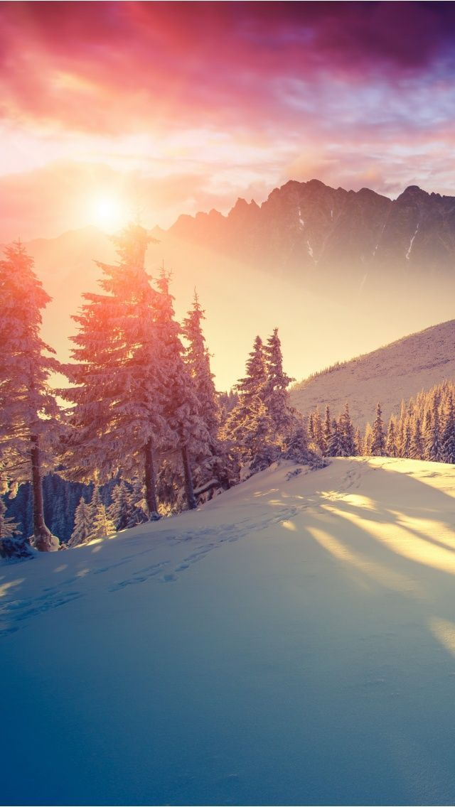 The Winds Of Winter Winter Winter Night And Winter Wallpapers