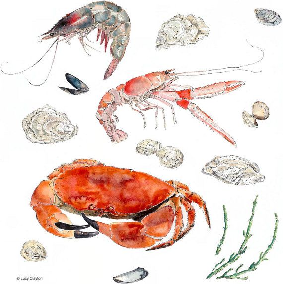 Seafood. Christmas Gift for Foodie. Food Art. Crab. Prawn. Langoustine. Oyster. Cockle. Muscles. Samphire. Dining Room Art. Home Decor