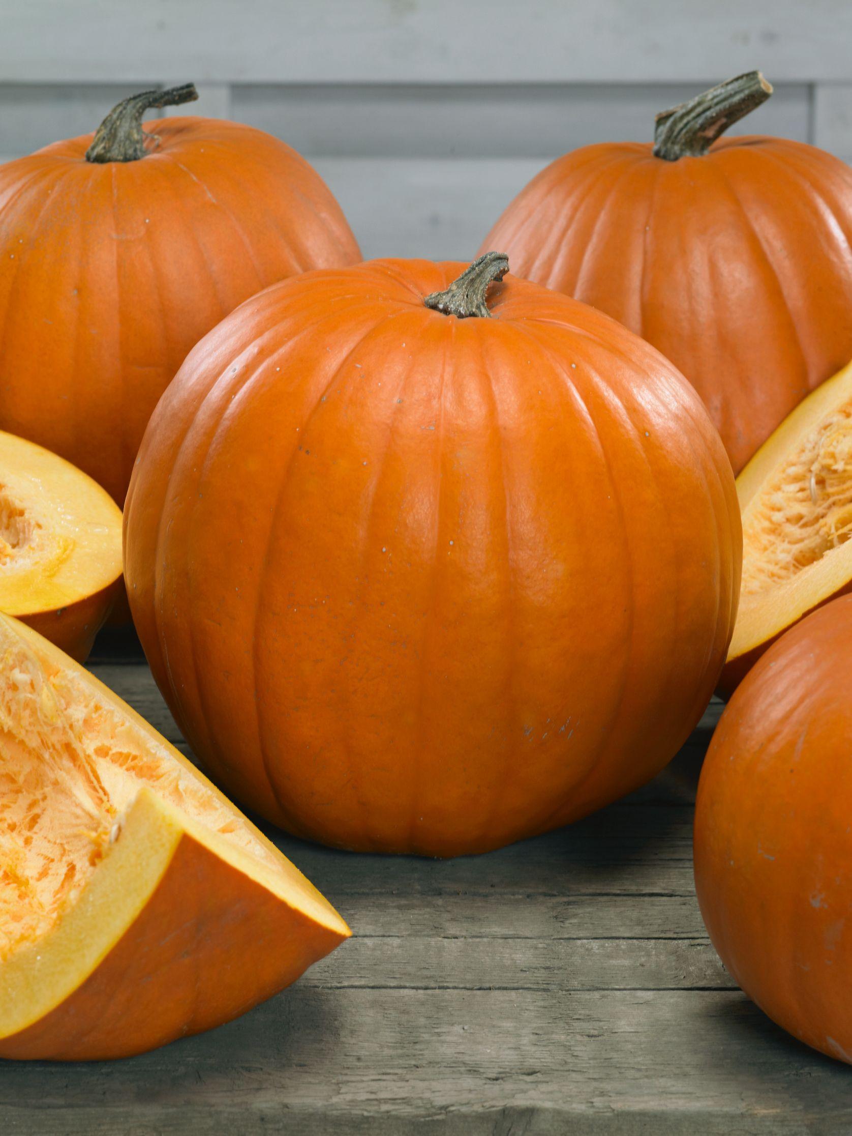 Pumpkin Pictures Pumpkin, Pumpkin pictures, Grow your