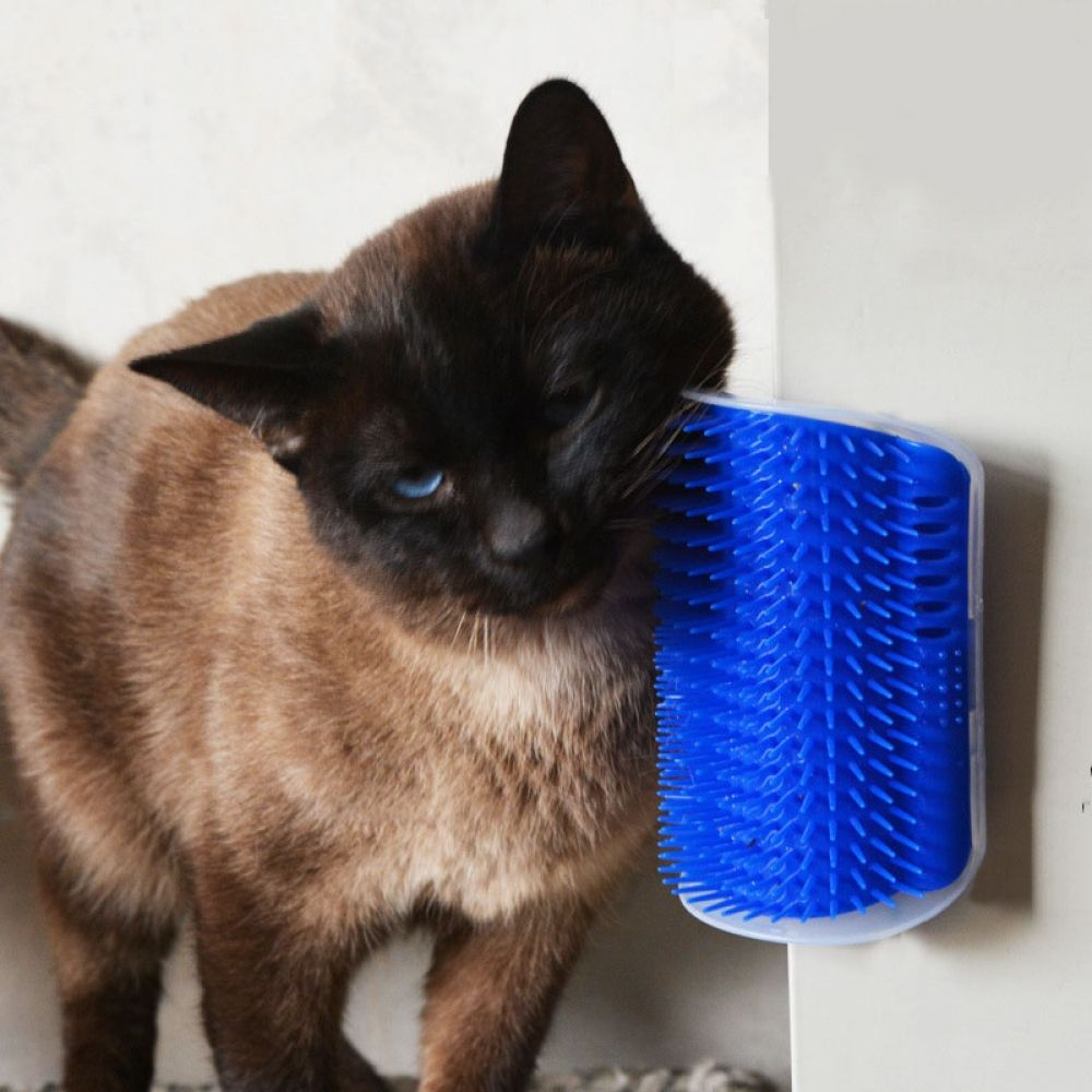 Cat's Massage Brush Cat supplies, Cat grooming, Pet toys