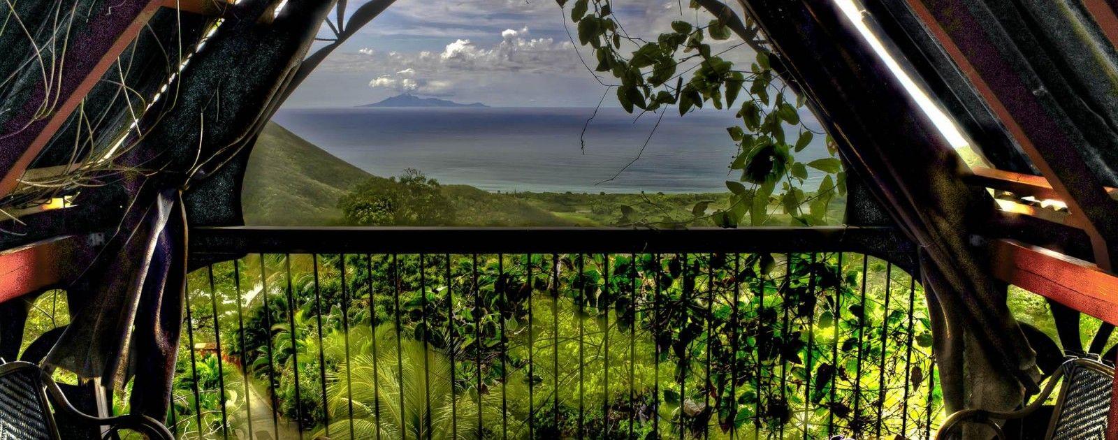 Guadeloupe : http://www.tendacayou.com