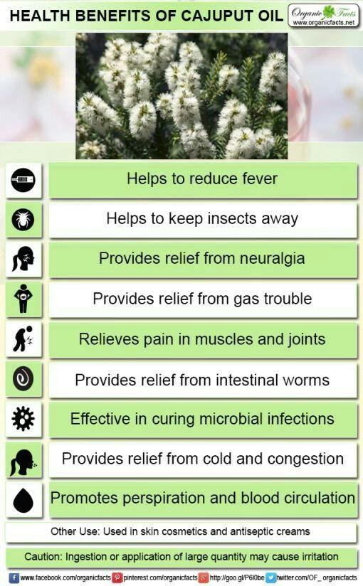 Cajeput Essential Oil Benefits