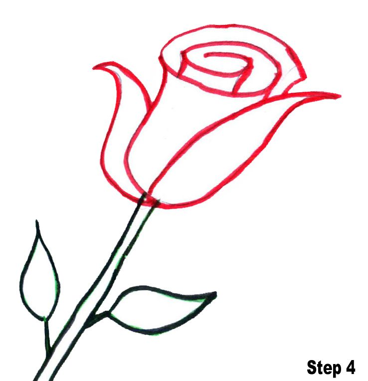 Bring Out The Artist In Them How To Draw Roses For Kids In 2019