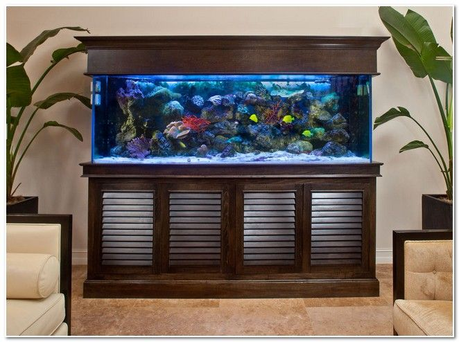 aquarium design - Google Search Aquários Pinterest