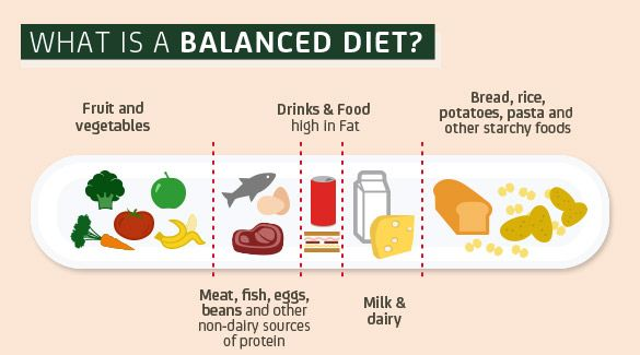 This balanced diet chart is super cute and useful tasty eats