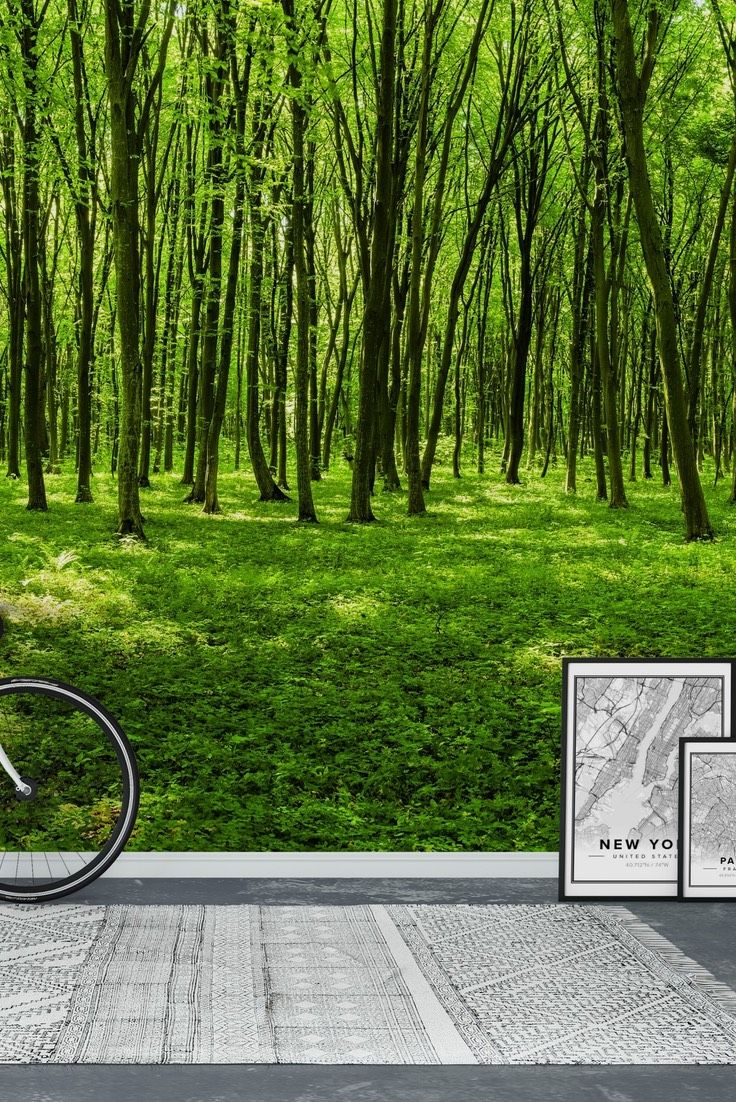 panorama of spring forest wall mural wallpaper forest wall panorama of spring forest wall mural wallpaper