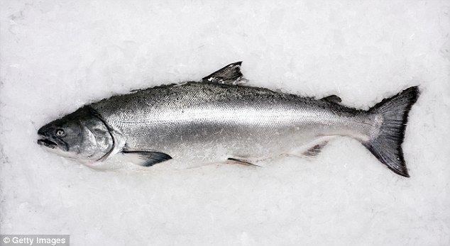 fish fresh photo - Buscar con Google