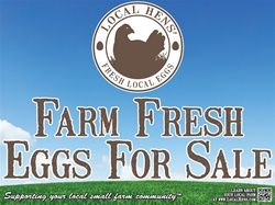 24 x 18 Local Hens Yard Sign | This one's for the girls