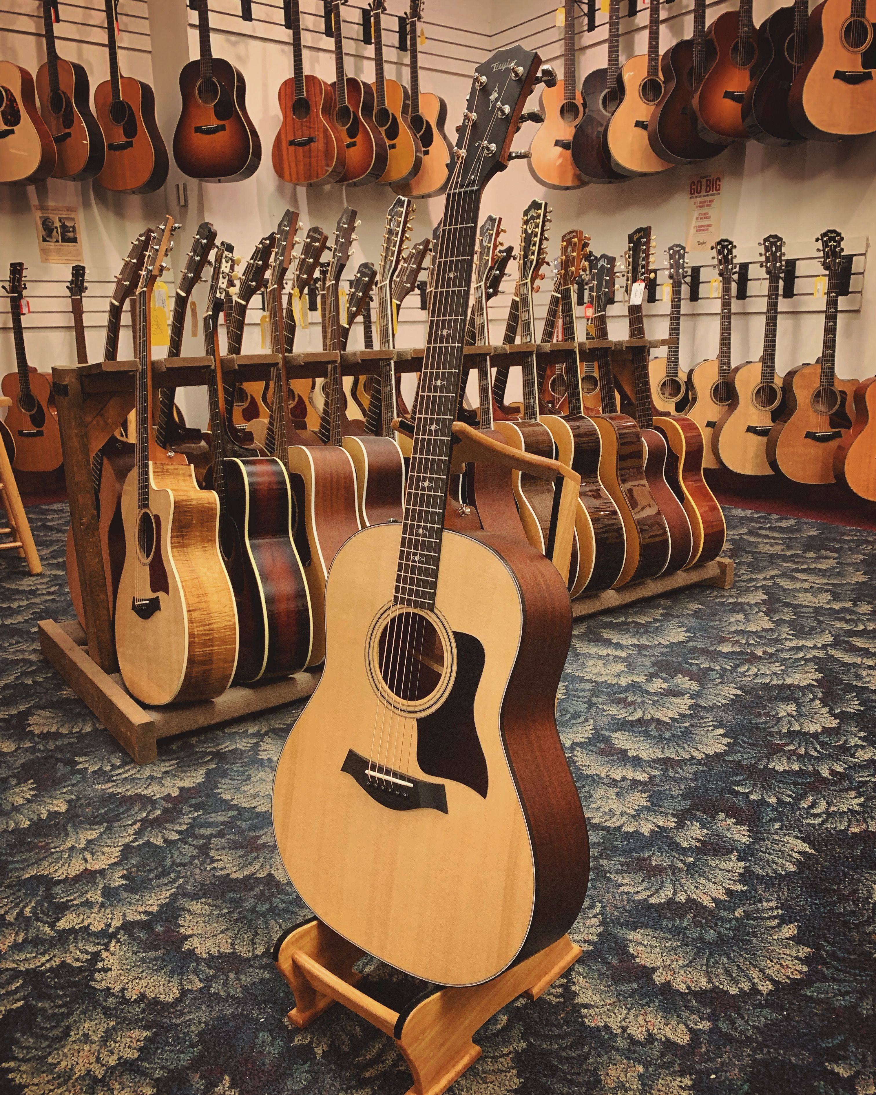 Taylor 317e Acoustic Guitar Case Acoustic Guitar Case Acoustic Guitar Best Acoustic Guitar