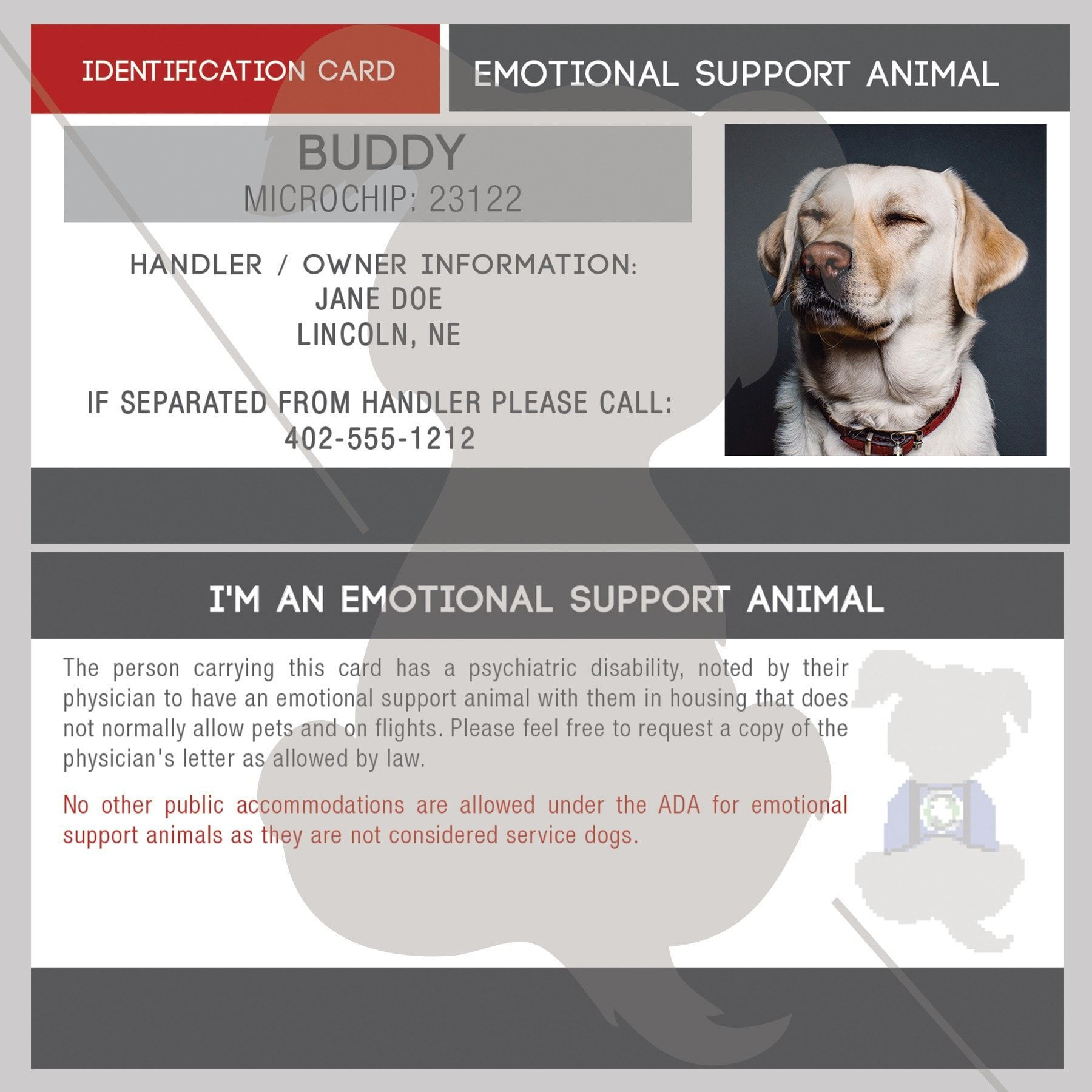 Id Card Emotional Support Animal Therapy Dogs Emotional