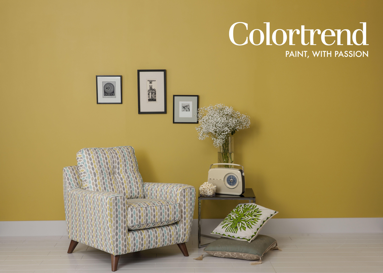 Walls, Gold Flake in Interior Matt finish. Skirting & Flooring ...