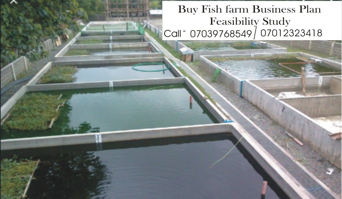 Fish Farming Business Plan In Nigeria PDF File Farming