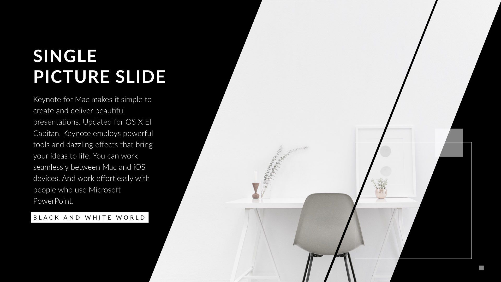 Black & White Clean Keynote Template 포스터