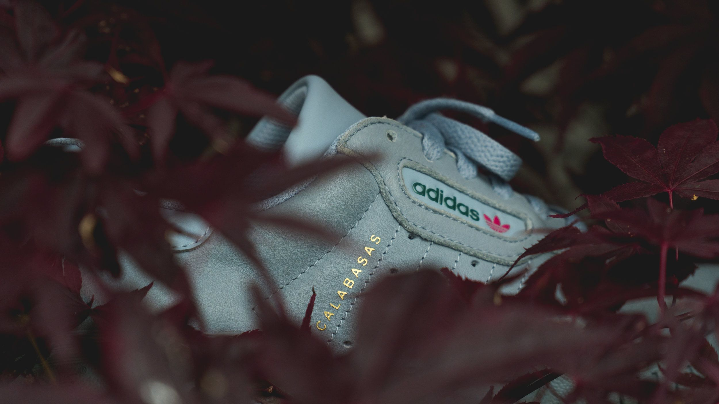 online retailer 79b40 16e17 Adidas Yeezy Season 5 Calabasas — Matt Wild Media