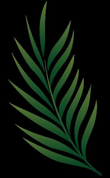 Pin De Esther Ratumudu Em Leaf Design Theme Fotos De Folhas Folhas Pintadas Folhas Tropicais Pattern with tropic summertime motif. pinterest