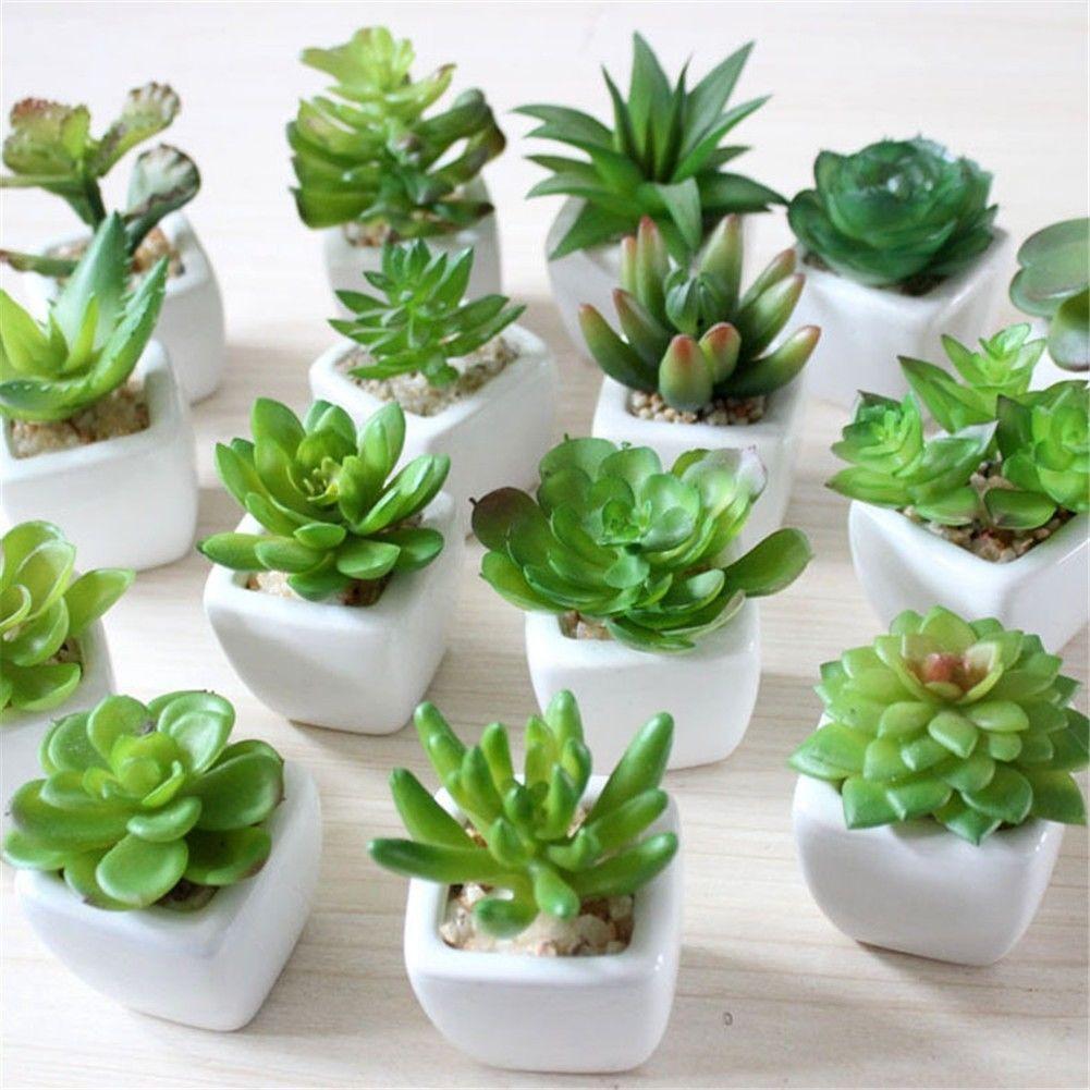 Plastic Artificial Succulent Plant Cactus Floral Garden Home Office Flower DIY