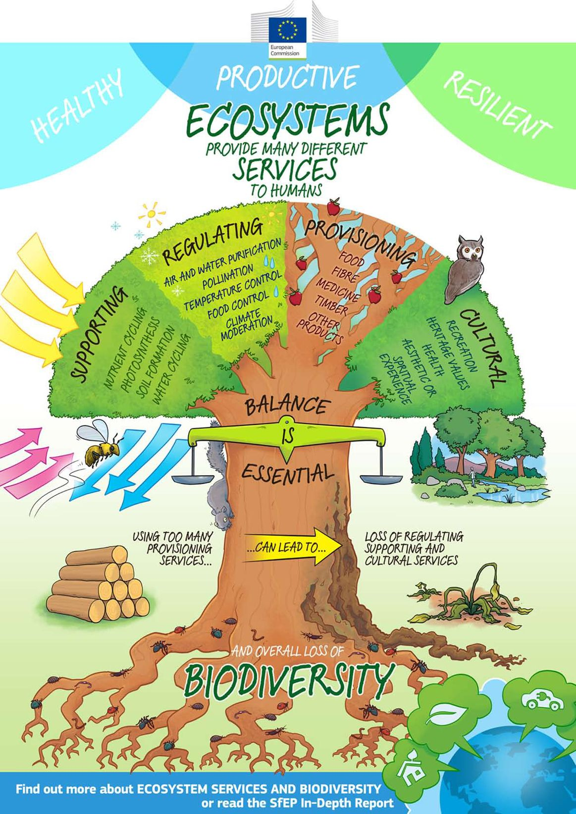 infographic showing how ecosystems provide many different services to humans and how using too many provisioning services such as food, fibres, medicine and timber, can lead to loss of regulating supporting and cultural services and overall loss of biodiversity.