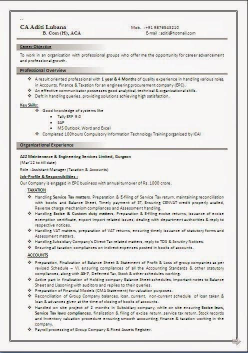 cv przyklad sample template example ofexcellent curriculum vitae resume cv format with career objective - Resume Curriculum Vitae Format