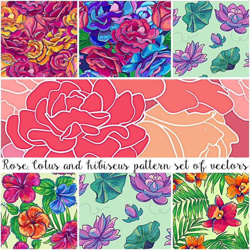 Floral patterns hibiscus and lotus vector set (With images
