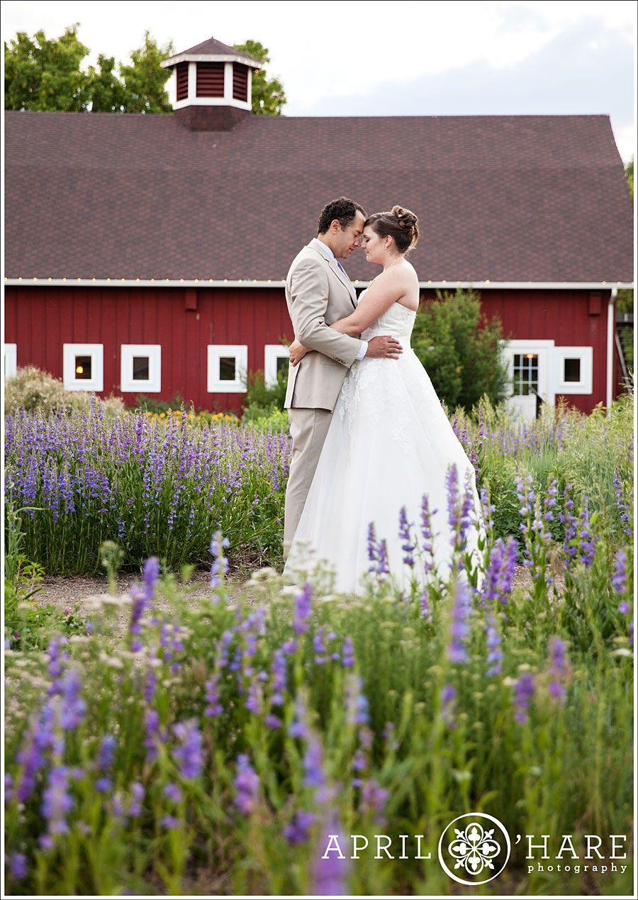 be091c267fecc4d603e96efc71a45f7a - Denver Botanic Gardens Chatfield Farms Wedding