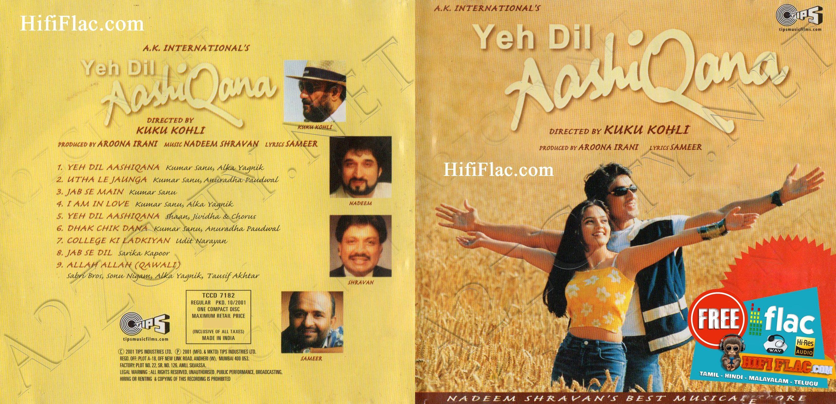Yeh Dil Aashiqanaa 2001 Hindi Acdrip Flac