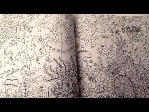 Enchanted Forest An Inky Quest And Colouring Book