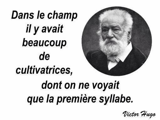 Coquin Aussi Victor Hugo Victor Hugo Citations Victor Hugo Citation