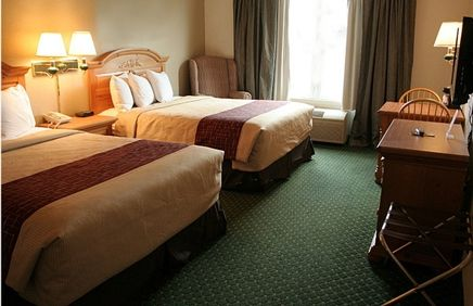 Pet Friendly Hotel In Knoxville Tennessee Red Roof Inn East