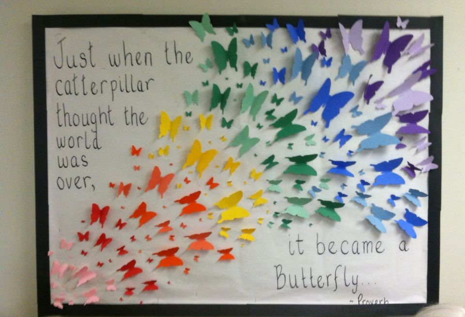Nursing Classroom Design ~ My butterfly bulletin board at the nursing home our theme
