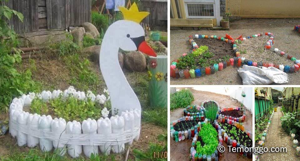 10 Inspirasi Kebun Sayuran Di Rumah Dari Botol Bekas Kebun Sayur Kebun Ide Berkebun