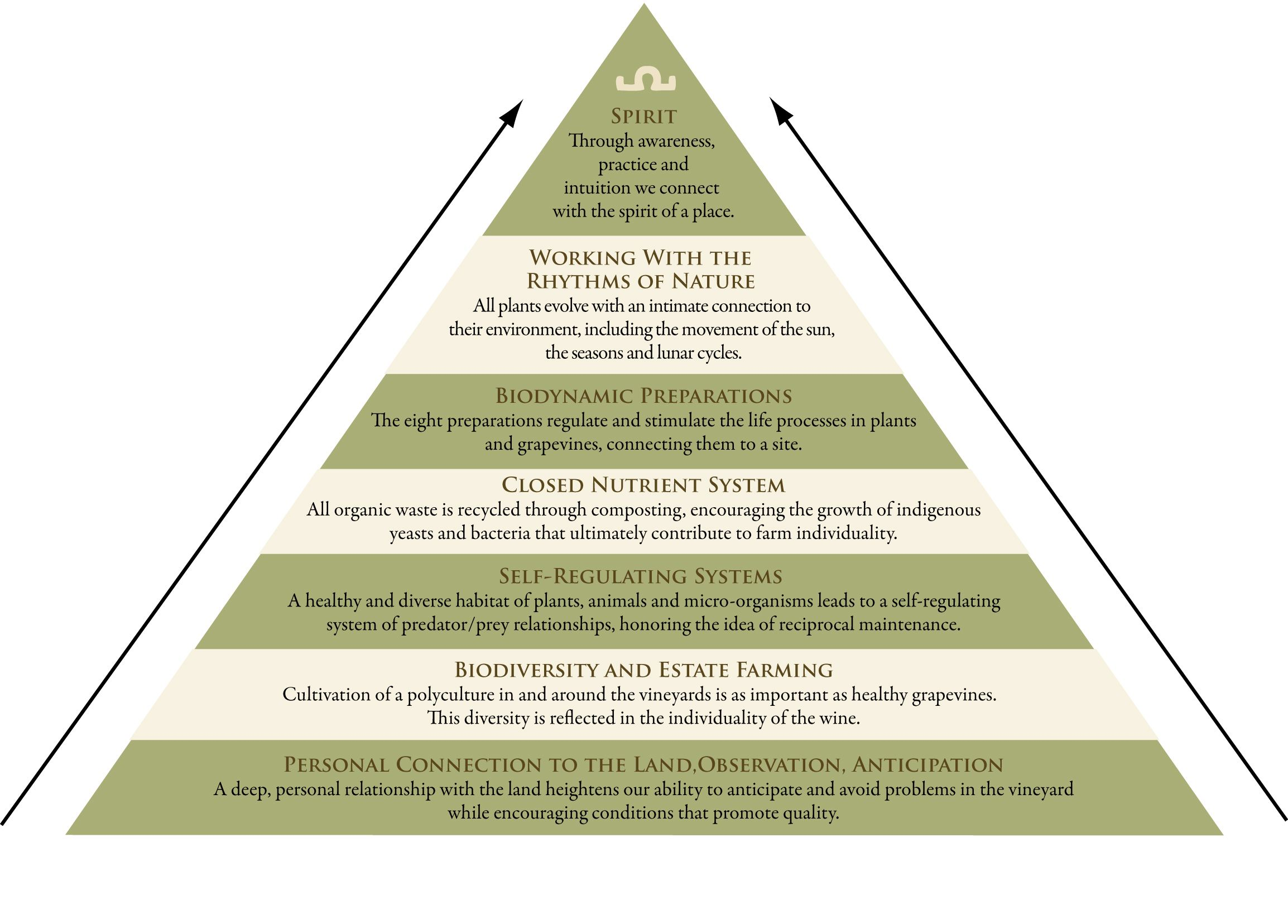 What Is Biodynamics Biodynamic Association Info Chart