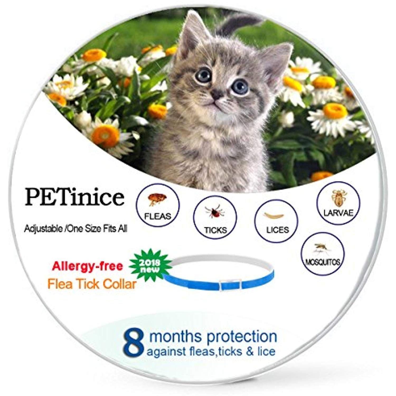 Flea And Tick Prevention For Cats Flea Control For Cats Prevents Repels Fleas Ticks And Lice Waterproof And Adjus Flea Spray For Dogs Natural Flea Spray Fleas
