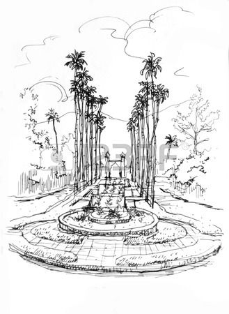 Stock Photo Pencil Drawings Drawings Palm Trees
